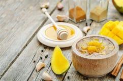 Chutney di mango Fotografie Stock