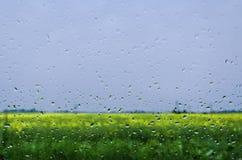 Chuva Foto de Stock