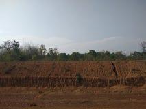 Chuva alaranjada do solo cutted imagem de stock