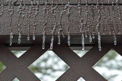 Chuva congelada Fotos de Stock