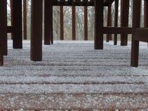 Chuva de congelação em um dia frio de março Imagens de Stock