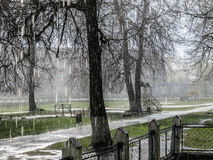 Chuva de mola Foto de Stock Royalty Free