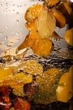 Chuva do outono. imagens de stock