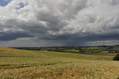 Chuva do verão Imagem de Stock
