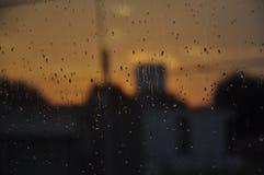 Chuva do verão Fotografia de Stock Royalty Free