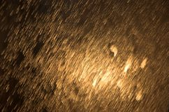 Chuva dourada Imagens de Stock