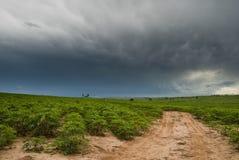 Chuva e agricultura Foto de Stock