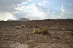 Chuva em Mitzpe Ramon, cratera de Ramon no deserto do Negev, Israel sul, inundações da água no deserto foto de stock