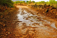 Chuva em uma estrada de terra Foto de Stock