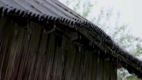 A chuva flui para baixo de um telhado vídeos de arquivo