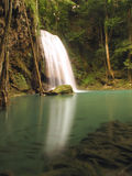 Chuva Forest Waterfall Fotografia de Stock Royalty Free