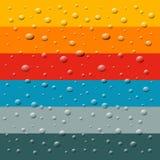 Chuva, gotas da água Foto de Stock