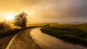 Chuva morna do verão Imagem de Stock Royalty Free