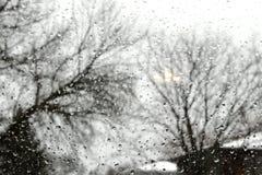 Chuva na janela com as árvores no fundo fotos de stock