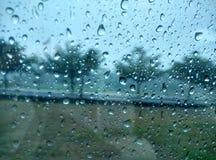 Chuva na janela com fundo da árvore foto Imagem de Stock Royalty Free