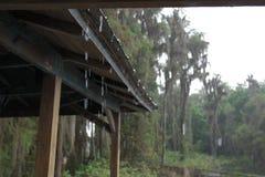 Chuva na plataforma Imagens de Stock