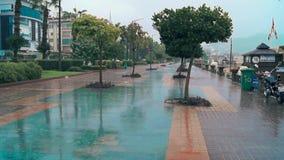 Chuva na rua video estoque