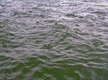 Chuva no mar Imagens de Stock