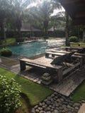 Chuva nos trópicos Imagem de Stock Royalty Free