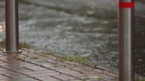 Chuva pesada em ruas da cidade vídeos de arquivo