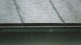 Chuva pesada em um dia tormentoso video estoque