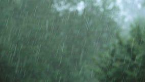 Chuva pesada em um dia tormentoso vídeos de arquivo