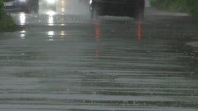 Chuva pesada na mola video estoque