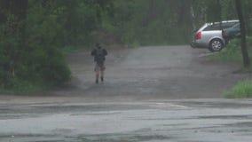 Chuva pesada na mola vídeos de arquivo