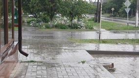 Chuva pesada na rua vídeos de arquivo