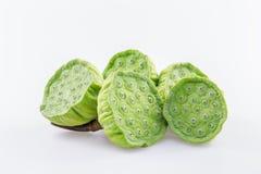 Chuveiro da semente de Lotus e dos lótus no fundo branco Imagens de Stock Royalty Free