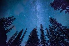 Chuveiro de meteoro de Persids sobre Lake Louise Foto de Stock