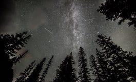 Chuveiro de meteoro de Persids sobre Lake Louise Fotografia de Stock