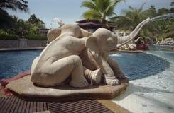 Chuveiro dos elefantes Fotografia de Stock Royalty Free