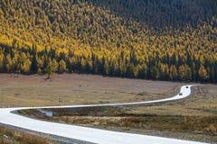 Chuya highway or Chuysky Trakt of Altai Republic Royalty Free Stock Photography