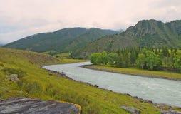 Chuya River Valley di estate, montagne di Altai, Siberia, Russia Fotografia Stock Libera da Diritti