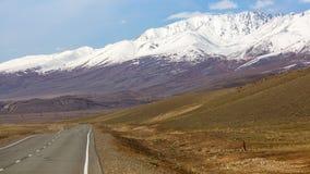 Chuyaweg bij de rand van berg noorden-Chuya, Altai-bergen Stock Foto's