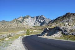 Chuysky trakt in Altai mountainsh royalty-vrije stock foto's