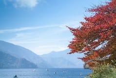 red leaf in Chuzenji lake Royalty Free Stock Photo
