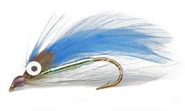 chwyt ryba Zdjęcie Royalty Free