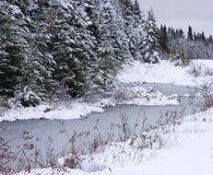 Chylenie, zimy, strumień Zdjęcia Stock
