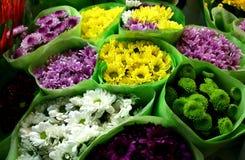 chysanthemumförsäljning royaltyfria foton