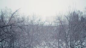 Ciężki opad śniegu w mieście Strzelać z bokeh skutkiem w zwolnionym tempie zbiory wideo