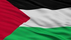 Ciérrese encima de agitar la bandera nacional de Palestina stock de ilustración
