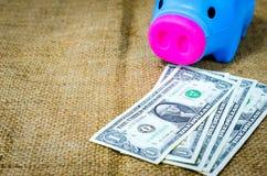 Ciérrese encima de billete de banco y de la hucha de los dólares Imagenes de archivo