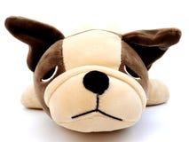 Ciérrese encima de cara de la muñeca del perrito en aislado imágenes de archivo libres de regalías