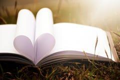 Ciérrese encima de forma del corazón del libro de papel en campo de hierba con el fondo de la falta de definición del filtro del  Fotografía de archivo
