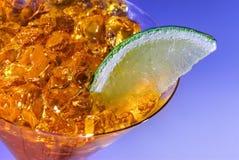 Ciérrese encima de la bebida de martini Imágenes de archivo libres de regalías