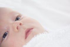 Ciérrese encima de la cara del bebé que mira para arriba Fotos de archivo libres de regalías