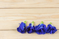 Ciérrese encima de la flor del guisante en el fondo de madera, opinión de alto ángulo imágenes de archivo libres de regalías