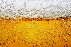 Ciérrese encima de la foto de la cerveza fotos de archivo libres de regalías